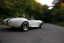 '65 Cobra