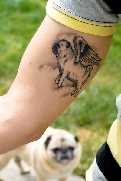 Pug Tattoo. Pugasus! Tattoo by Justin Dion. You can find Justin at Blacklist