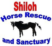 Visit Shiloh&#39;s Website