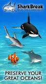 Clique na imagem e brinque com os golfinhos e baleias