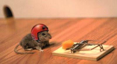 Palabras encadenadas. Trampa-ratones_mouse_trap