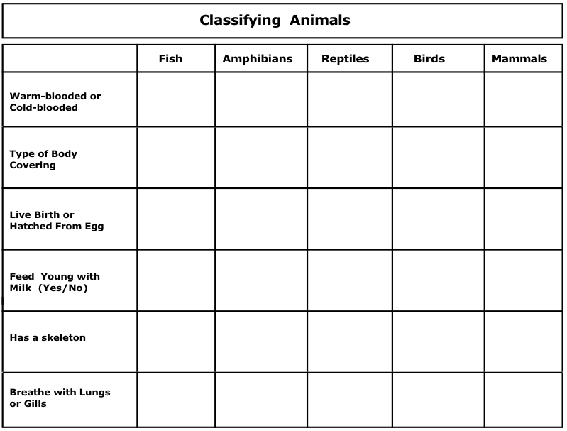 Five+Senses+Lesson+Plans+Activities Worksheet Science Animals Also ...