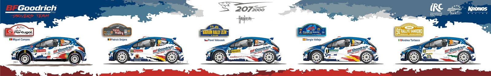 [BFGoodrich+Drivers+Team+2008_small.jpg]