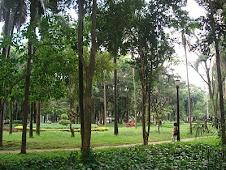 Jardim da Luz.