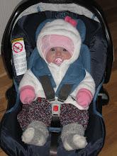 Lilla V - 4 månader gammal