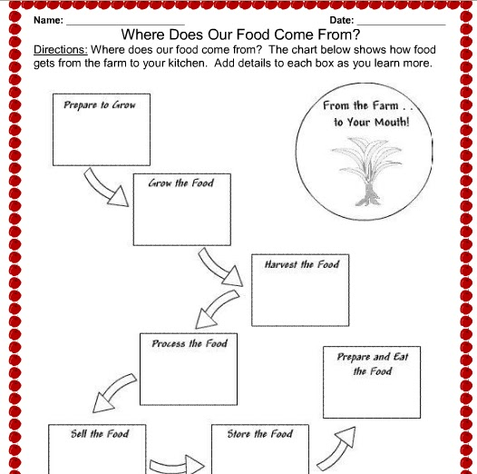 Printables Marine Biology Worksheets grace christian homeschool review of kb teachers nutrition marine biology plants and microbiology worksheets we used some the sheets to aid in our cub scout learning