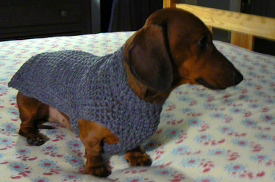 CROCHET SWEATER FOR DACHSHUND   Only New Crochet Patterns