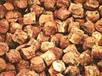 gambir, gagang cengkeh,pinang,durian,damar
