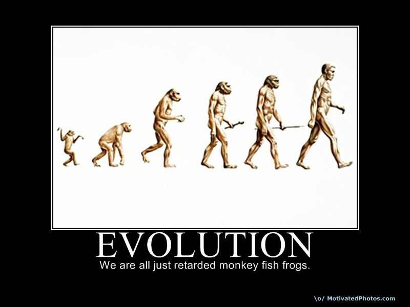 thoery of evolution What is charles darwin's theory of evolution let us not get controversial, but simply stick to the facts about charles darwin and his theory of evolution.