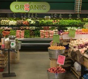organic food stores