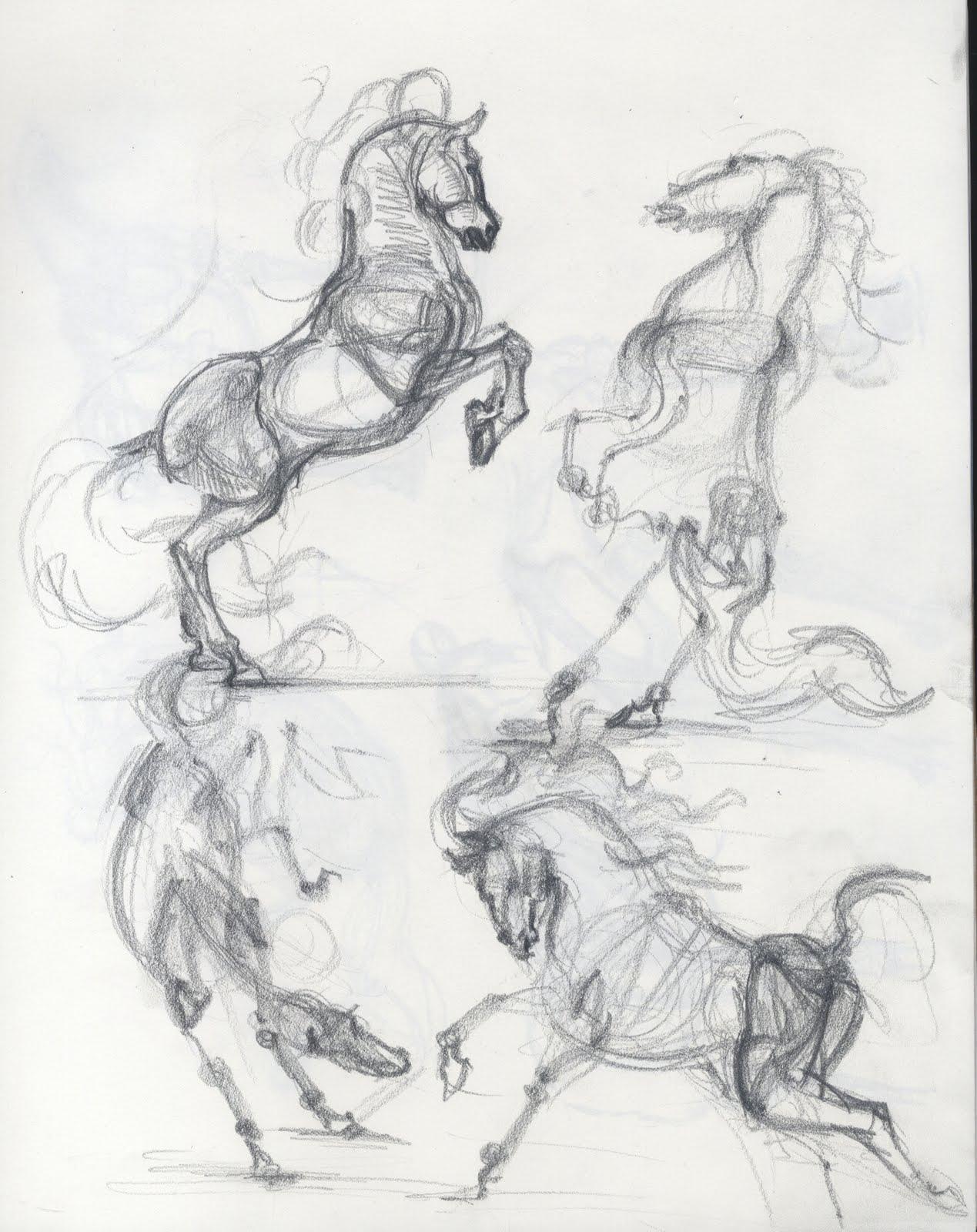 Takehiro Nishikawa Portfolio: Horse Drawing practice
