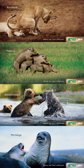funny-ads12-animal-planet