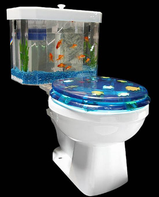 Pictovista 15 cool fish aquariums for Cool fresh water fish