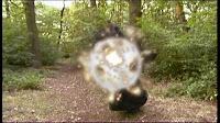 CGI explosions