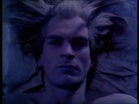 vampire bed head