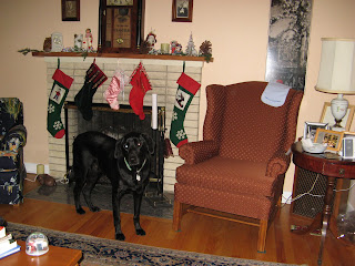 Diesel inspecting the stockings