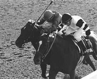 Affirmed beats Alydar in the Belmont Stakes on June 10, 1978, to win the Triple Crown