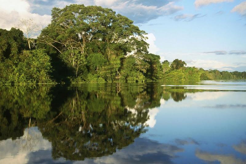 Naturaleza y Medio Ambiente: Saqueo de Occidente en la amazonía peruana