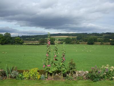 Merry Shield Farm
