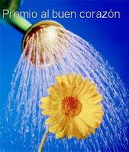 Premio al buen corazón. Recibido de Epicentro Hispánico