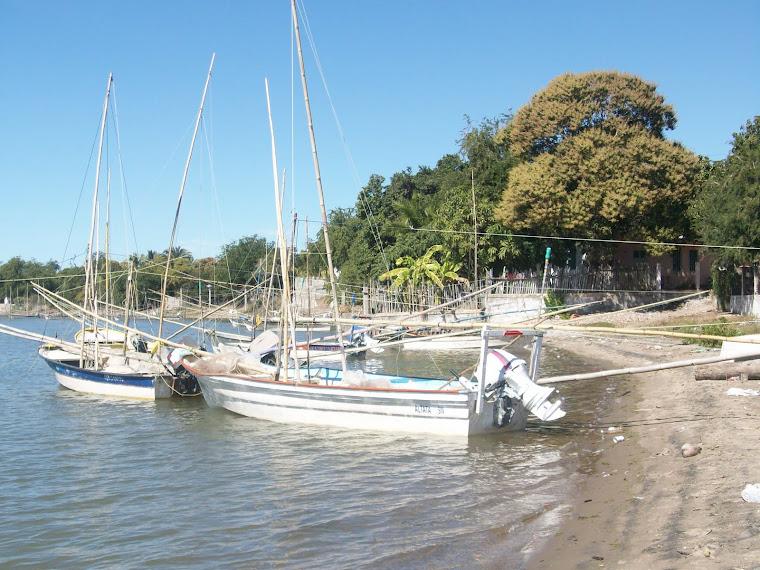Flota pesquera de Las Arenitas, sindicatura Eldorado