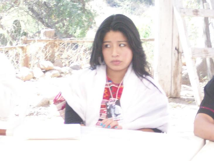 Representante de la belleza indígena mexicana