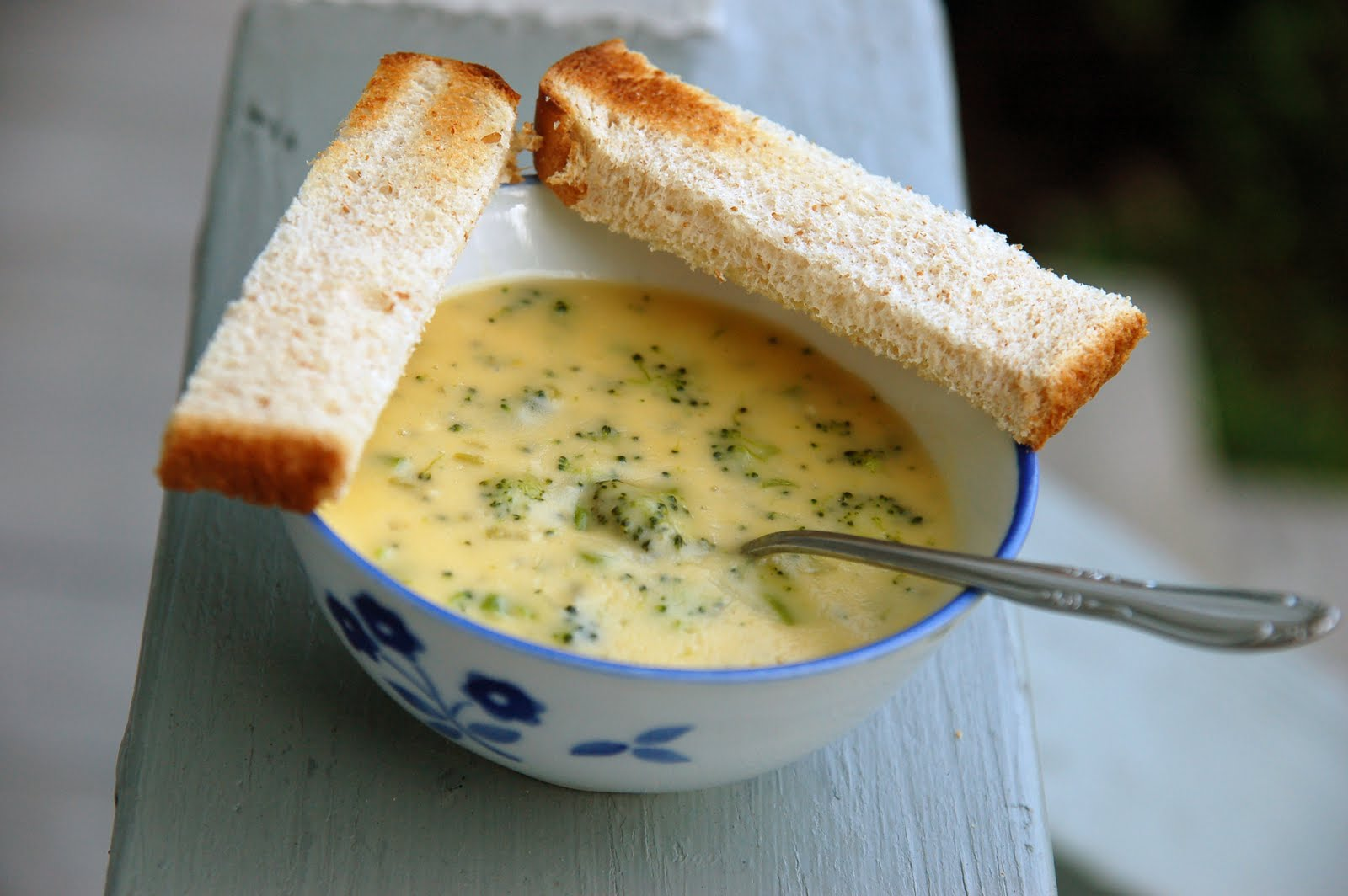 The Little Girl's Guide to Sugar and Spice: Broccoli-Cheddar Soup
