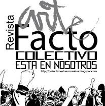 Revista Arte Facto Nº 13