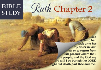 Bible Study Ruth Chapter 2 Amp A Link Up Bible Studies