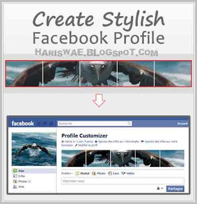 Merubah Tampilan Profil Facebook Dengan Apps Profile Customizer