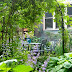 Urban Garden Ideas 10 Design Tricks