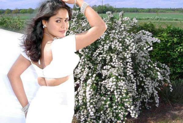 mallu aunty white saree ing her very tight blouse seeing big hot photoshoot