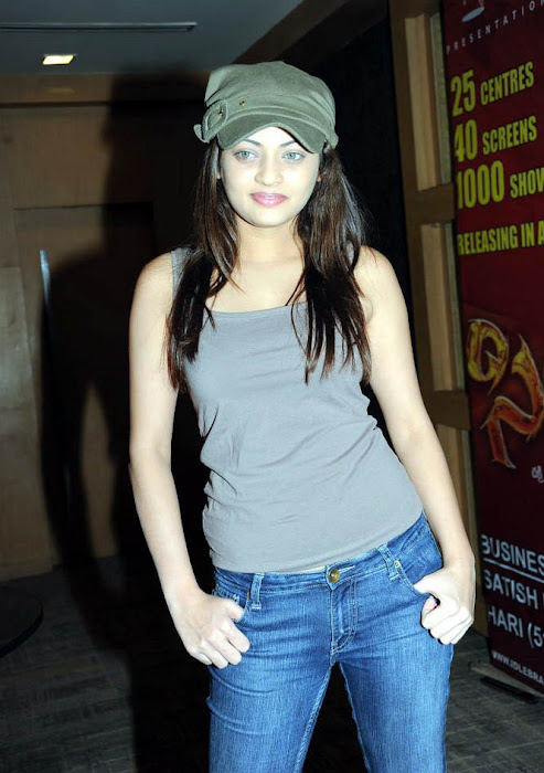 sneha ullal sneha ullal jeans cap bollywood sneha ullal dress latest photos