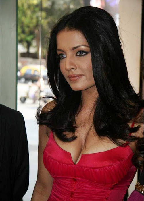 celina jaitley celeina jaitley red dress picture