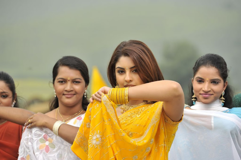 Richa Gangopadhyay  Mirapakaya Telugu Film Latest Cute Saree Stills Beautiful Gallery gallery pictures