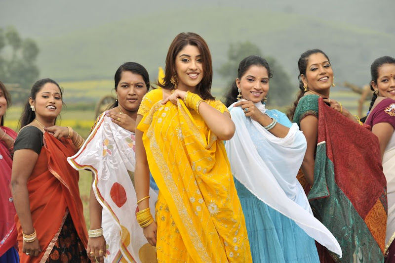 Richa Gangopadhyay  Mirapakaya Telugu Film Latest Cute Saree Stills Beautiful Gallery sexy stills