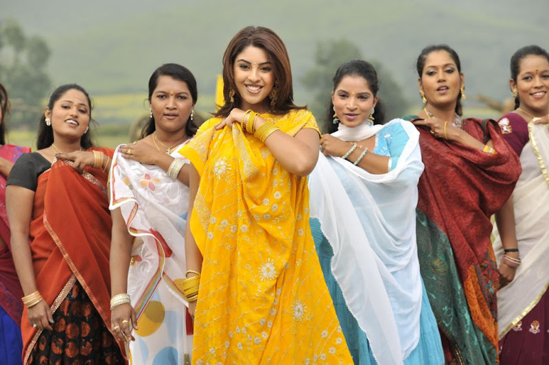 Richa Gangopadhyay  Mirapakaya Telugu Film Latest Cute Saree Stills Beautiful Gallery glamour images
