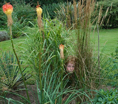 Boy and Red Hot Pokers ⓒ Cate McRae 2007; All Rights Reserved