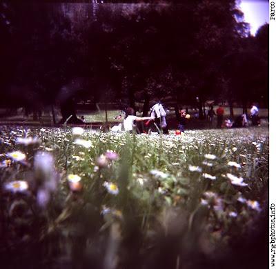 Fotografia di persone in un parco pubblico a Roma. Macchina fotografica Holga 120 CFN