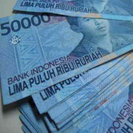 http://2.bp.blogspot.com/_mEslON0UrEU/S7q-WEatUOI/AAAAAAAAAVk/J2cKaRkg29o/s1600/pohon+uang1.JPG