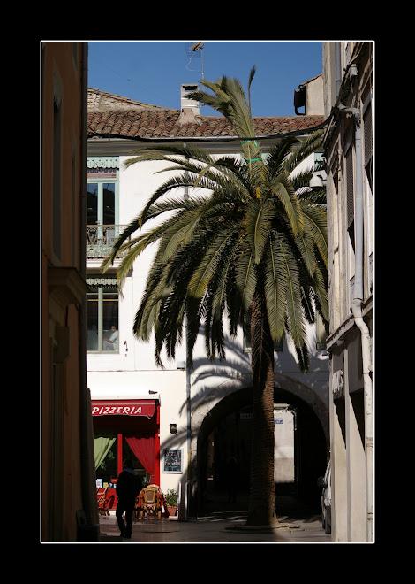 nimes, rue des arenes