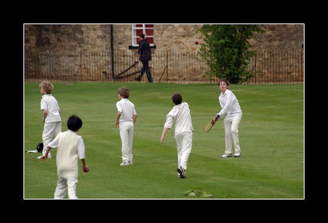 cricket #2