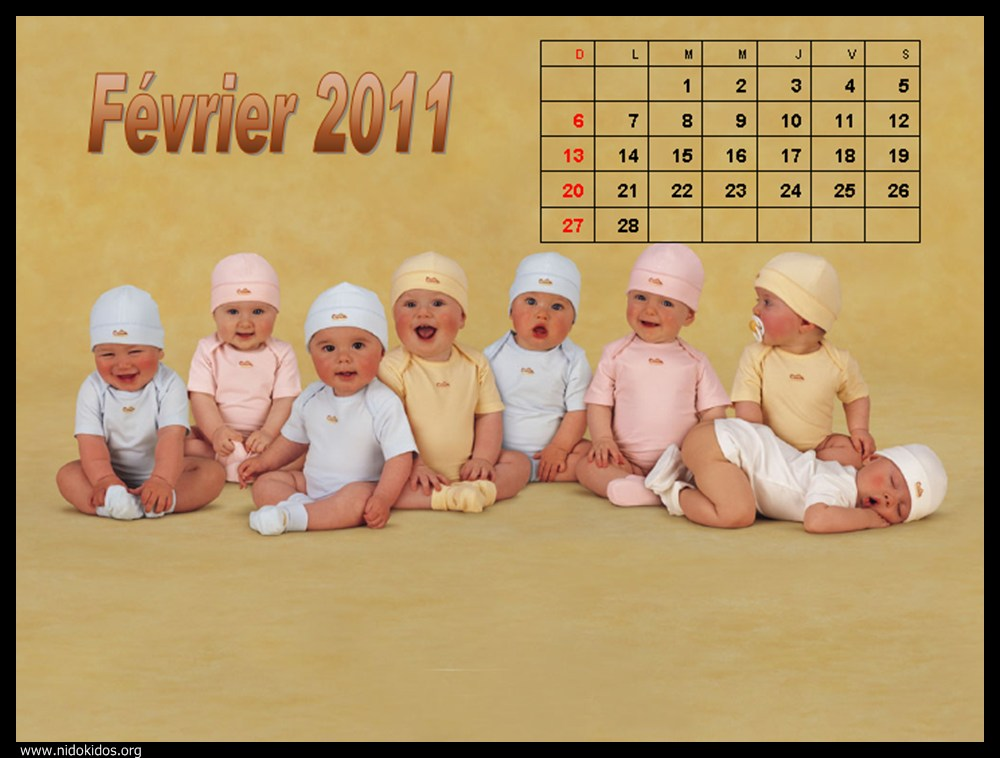 desktop wallpaper calendar 2011