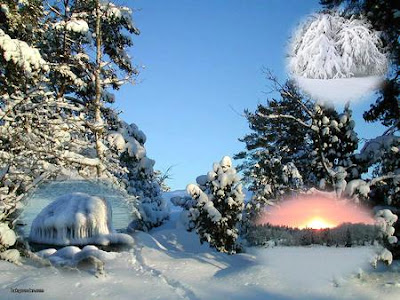 Sweden Winter Nature Wallpaper