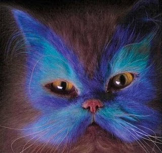 Painted_Cats