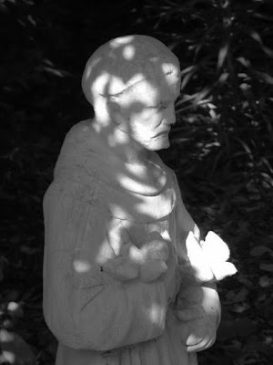 Geotagged black and white photograph of Saint Francis statue