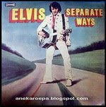 Elvis Presley_separate ways