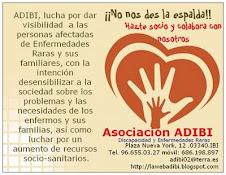 ADIBI, lucha por la Visibilidad de las ER.