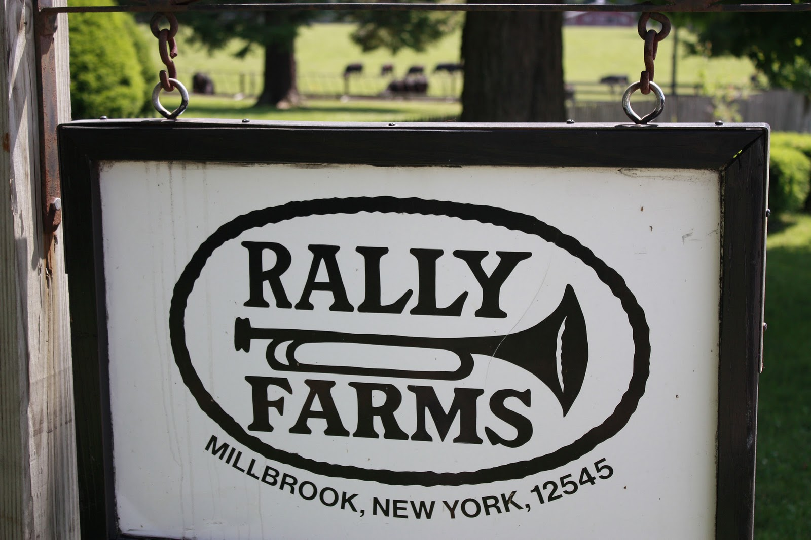 http://2.bp.blogspot.com/_mJUSNgThx1Y/TCFz3PZ9dxI/AAAAAAAAAc4/4rsJays2HsM/s1600/Rally+Farms_day3+018.jpeg