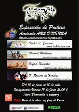 VIII EXPOSICION ARS DIVERSA 2009 :